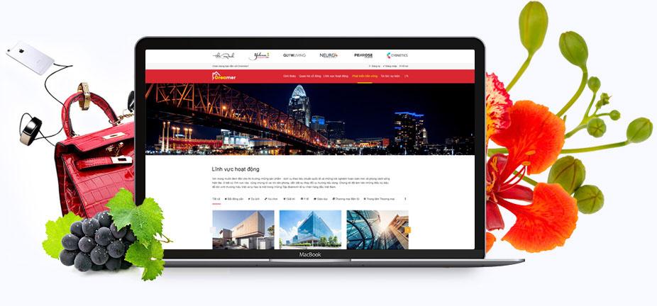 thiet-ke-website-tai-hai-phong